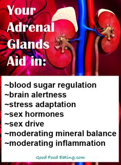 CLICK HERE to read about adrenal fatigue and why adrenal health is so important.  http://goodfoodeating.com/2234/