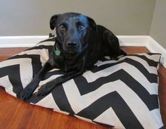 Black/Denton Chevron Pet Dog Duvet Cover-Large by TheOliveCrow