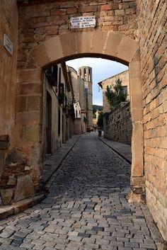 El Monasterio de Pedralbes es un monasterio gótico de Barcelona, Cataluña, España. Ahora es un museo, alberga las colecciones del Museo de historia de la ciudad de Barcelona.  por: Josep Vallès