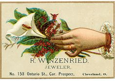 Free Vintage Trade Card ~  Lovely hand holding a calla lily, green leaves and holly berries. Great for a holiday card or tag.  Download @: http://vintagefeedsacks.blogspot.com/2011/12/vintage-trade-card.html
