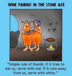 """Wine Pairing in the Stone Age: """"Simple rule of thumb: if it tries t eat us, serve with red. If it runs away from us, serve with white. Wine Jokes, Wine Funnies, Funny Wine, Traveling Vineyard, Rule Of Thumb, Wine Wednesday, In Vino Veritas, Wine Parties, Stone Age"""
