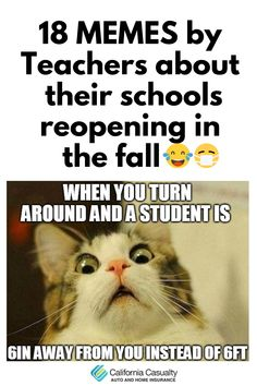 Need a laugh? Look at these memes made by teachers about their schools' plans for the fall 🤣😅  #teacherprobs #teacherhumor
