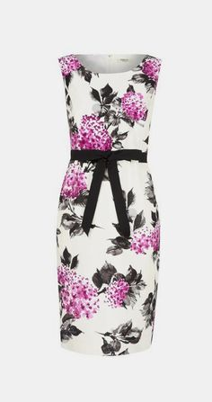 Precis Petite Magenta floral shift dress, Multi-Coloured