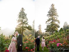 wedding-portraits-rose-garden