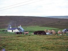 The island of Yell is located at the north of the Shetland mainland and is the second largest island in the group. Over two thirds of its landscape is dominated by peat. Viking Culture, Countries Of The World, Islands, Scotland, Sailing, Coast, England, Mountains, Landscape