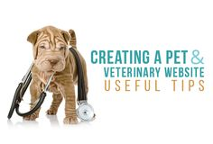 Creating a Pet and Veterinary Website - Useful Tips