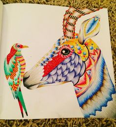 From #wildsavannah by #milliemarotta #adultcolouring #adultcolouringin #adultcolouringbook - Now do I add in a background? X