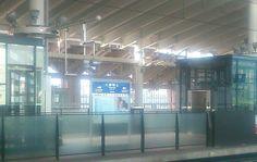 九州新幹線で博多に向かいます。40分程で着く模様。