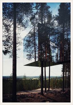 Le Treehotel en Suède http://www.vogue.fr/voyages/adresses/diaporama/les-adresses-de-l-ete-de-karlie-kloss/19914/image/1041645#!le-treehotel-en-suede