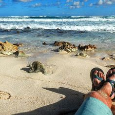 Working on my #chaco #tan in #mexico like... -- Just another day at the #beach. #Cozumel #cruise #royalcaribbean #allure #allureoftheseas #photography #travel #travelgram #instatravel #wanderlust #adventure #explore #rei1440project #optoutside #relaxing #chacos