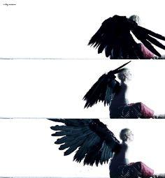 Wings. V