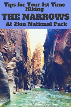 Zion Narrows Day Hike: What You REALLY Need to Know Before You Go! Nervous about hiking the Narrows at Zion National Park? Almost anyone can do The Zion Narrows Day Hike! Find out what you REALLY need to know before you go! Hiking The Narrows, The Narrows Zion, Narrows Zion National Park, Zion Park, Nationalparks Usa, Us National Parks, Day Hike, Location, Travel Usa