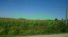 #Iowa #Corn #Fields #Photography #Digital #Pictures by #ClickyHappy #Landscape #BlueSky