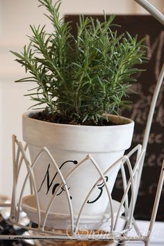 Cute herb pots