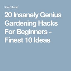 20 Insanely Genius Gardening Hacks For Beginners - Finest 10 Ideas