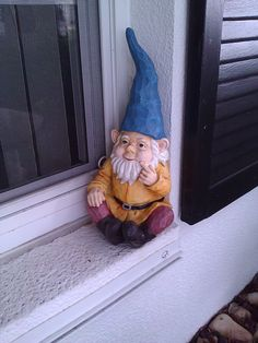 Rare Blue Hat Gnome - probably visiting a friend here in the States