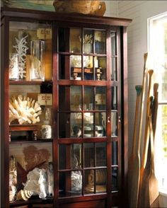 collection of coral in a beautiful cupboard...