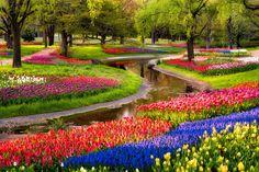 Tulips-at-Serpent-Garden-in-Japan