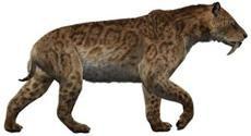 El Smilodon populator es una especie del género Smilodon que habitó en Sudamérica desde el Pleistoceno medio hasta el Holoceno medio (según los restos más recientes), a lo largo de Argentina, Paraguay, Urugay, Bolivia, Brasil y el sur de Perú.