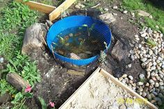 """Simple 'pond' at Acorns Preschool - image shared by 'Niki Willows - Outside' ("""",)"""