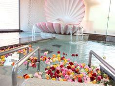 I would climb in that shell and pretend I'm Ariel :)