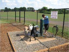 Dog park idea