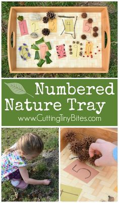 Let your children make a beautiful numbered nature tray. This activity will get your preschool kids outside to help with basic math skills like numeral recognition, counting, and one-to-one correspondence. Perfect idea for kinesthetic learners. Counting Activities, Kids Learning Activities, Fun Learning, Preschool Activities, Number Activities, Forest School Activities, Nature Activities, Spring Activities, Outdoor Activities