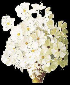 Resultado de imagen de ANIMATED FLOWERS BEAUTIFUL AND GLITTER Flowers Gif, Gifs, Roses, Youtube, Beautiful, Butterfly Wings, Butterflies, Nighty Night, Beautiful Flowers