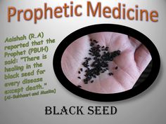 Islamic Blog - Muslim - The Quran and Hadith - Books and Articles: Black Seed