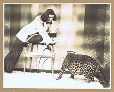 Katharine Hepburn was fearless around Baby the live leopard of Bringing Up Baby (1938). Cary Grant not so much. Cary was more comfortable around the chimps in Monkey Business.