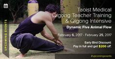 """""""In the end we only regret the chances we did not take"""". Don't miss this opportunity to participate in another White Tiger Qigong intensive training starting on Feb 6th and enrich your body and life with Qi energy! Book your spot now to enjoy the early bird discount. Medical Qigong, Animal Flow, Intensive Training, Early Bird, Upcoming Events, Regrets, Opportunity, Teacher, Books"""