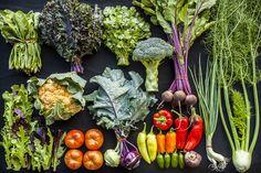 Johnson's Backyard Garden - Vegetable Guide