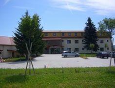 Wellness pobyt pro aktivní seniory 55+ - Hotel Kopanice **** | Lázně a wellness hotely : Spa.cz