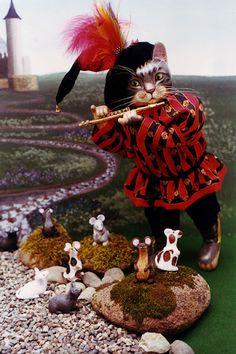 Tyber Katz Dolls - The Pied Piper