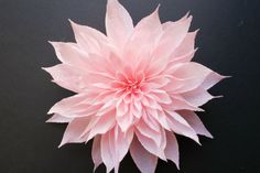 Crepe Paper Flower from Carte fini