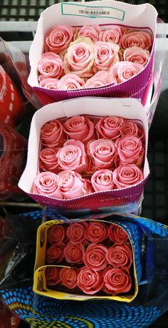 Sfumature di rosa!