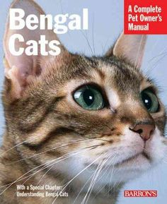Precision Series Bengal Cats: Everything About Purchase, Care, Nutrition, Health Care, and Behavior