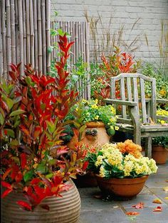 Beautiful containers can be as simple as one type of plant per pot. Group several one-plant pots for maximum impact. Here, pots of mums, pansies, burning bush and kalanchoe add bright fall color to the patio setting.
