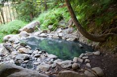 Another gem you can access in the Olympic National Park are these hot springs just off the Appleton Pass Trail, which is a relatively easy hike to get to. The water temp ranges from 85 degrees Farenheit all the way up to 105, which should keep you nice and toasty.