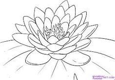 lotus drawing - Google Search