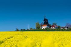 Malmo Suécia Primavera