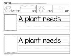Plants {Print & Play