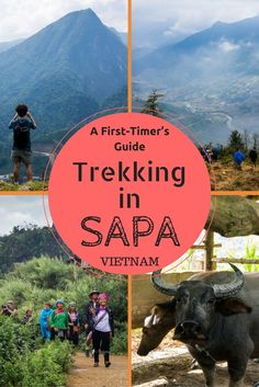 """Here is everything you need to know about trekking in Sapa, Vietnam. It is such a stunning area and should not missed on your """"places to go in Vietnam"""" list. Hiking in Sapa is something everyone should do of all ages when visiting Vietnam. #trekkingvietnam #vietnam #travelguide"""