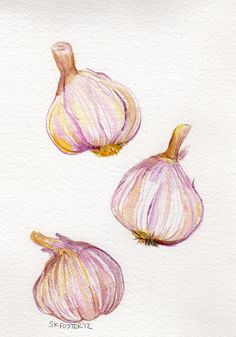Items similar to original watercolor aquarelle painting, garlic art kitchen decor on etsy Food Painting, Painting & Drawing, Watercolor Paintings, Original Paintings, Paintings Of Food, Vegetable Painting, Vegetable Drawing, Vegetable Pictures, Watercolor Fruit