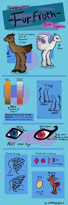 Hey, this is my first uploaded photo on Pinterest! open species guide, free usage, really proud of this :)
