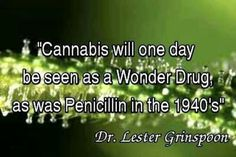 #Cannabis  http://thehempoilbenefits.com