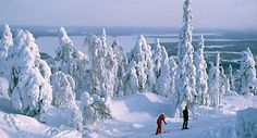 Lapland Adventures - 9 Winter Activities in Finnish Lapland - Discovering Finland Snow Castle, Visit Norway, Cross Country Skiing, Winter Activities, Summer Nights, Winter Holidays, Winter Wonderland, Nature, Tours