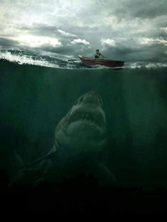 this is why the ocean scares me :(