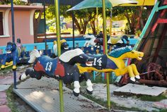 Image result for carousel cuba
