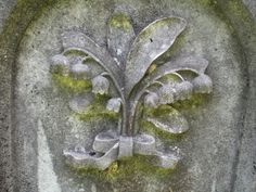 """Engraved: : Lily of the Valley---""""Tomb Stone and the Pips"""""""